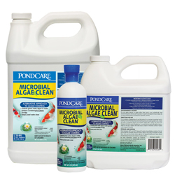 API Pond Microbial Algae Clean