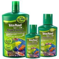 Tetra Algae Control