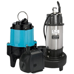 Little Giant Water Pumps Category