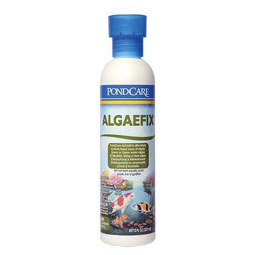 API Pond AlgaeFix 8 oz (MPN 169 A)