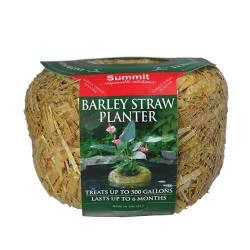 Barley Straw Planters Small (MPN 1138)