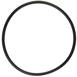 Lid O-Ring for Sequence 6'' Strainer Basket (MPN 1000.771-O)