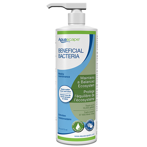 Aquascape Beneficial Bacteria 16.9 oz