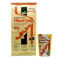 Hikari Gold Large Pellets 22 lbs with free Silkworm Selects