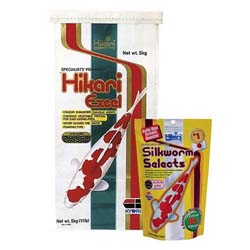 Hikari Excel 11 lbs with free Silkworm Selects