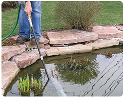 Spring Start Up Tips Best Prices On Everything For Ponds And Water Gardens Webb 39 S Water Gardens